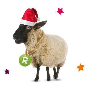 Schaf (Weihnachten) - OxfamUnverpackt