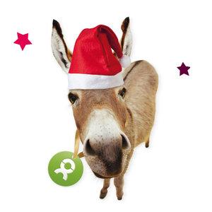 Esel (Weihnachten) - OxfamUnverpackt