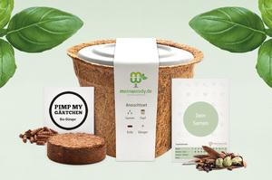 meinwoody Kräuter-Anzuchtset - Seed Evolution GmbH