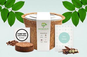 meinwoody Baum-Anzuchtset - Seed Evolution GmbH