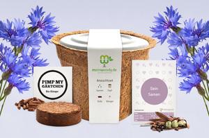 meinwoody Blumen-Anzuchtset - Seed Evolution GmbH