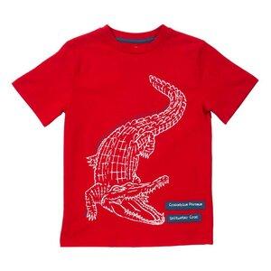 Kurzarmshirt Krokodil - Kite