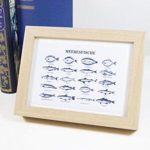Postkarte Meeresfische - Bow & Hummingbird