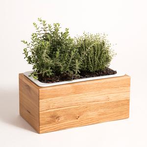 Kräuterbox Eiche Massivholz, 34x19x16 cm mit Porzellaneinsatz - GreenHaus