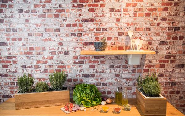 GreenHaus - Kräuterbox Eiche Massivholz verschiedene Größen mit Einsatz | Avocadostore