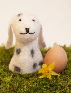 Hund mit weißen Flecken als Filz Eierwärmer - short'n'pietz