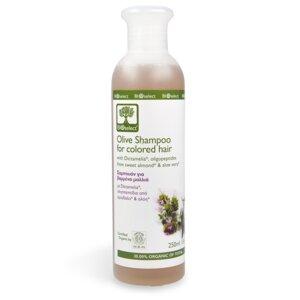 Olivenöl-Shampoo für coloriertes Haar - BIOselect