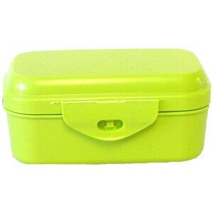 Grüne Aufbewahrungsbox mit Scharnierverschluss - Biodora