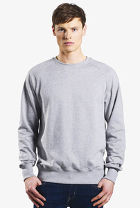 Sweatshirt - Men's Organic Sweatshirt - Grau - Continental Clothing
