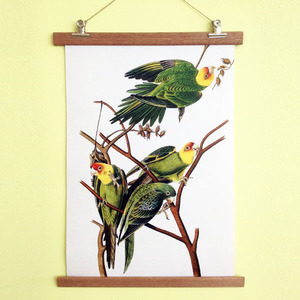 Poster Birdies mit Aufhängung - all the things we like