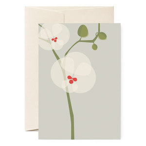 Grußkarte 'Orchidee' mit Umschlag - pleased to meet