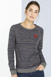 Sweatshirt Raglan Stripe Sandrine - SHIRTS FOR LIFE