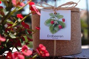 Grow Kork  Erdbeere  im Korktopf  - Life in a bag