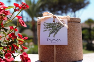 Grow Kork  Thymian im Kräuter Korktopf  - Life in a bag