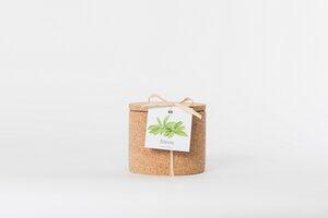 Grow Kork Stevia der Zuckerersatz  im Korktopf  - Life in a bag