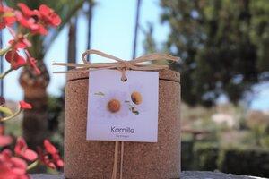 Grow Kork  Kamille sowohl als Kraut oder Blume  Korktopf  - Life in a bag