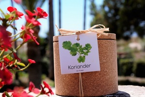 Grow Kork Korinader  im Korktopf  - Life in a bag