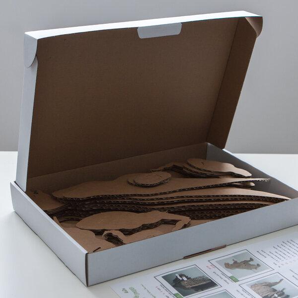 papp la papp dinosaurier aus pappe als bausatz avocadostore. Black Bedroom Furniture Sets. Home Design Ideas