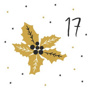 17.Türchen - Adventskalender