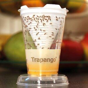 Trapango® Lebend-Fruchtfliegenfalle - Trapango®