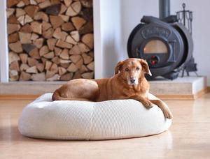 orthopädisches Hundebett aus Cord STOCKHOLM Größe S - Grüne Pfote®