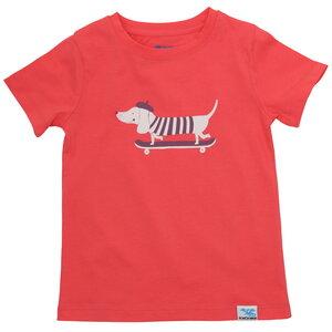 IceDrake Kinder T-Shirt Dackel (koralle) - IceDrake