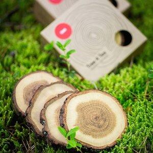 Holzuntersetzer 'Tree 4 Tea' - 4er Set aus Eichenholz - Rio Lindo