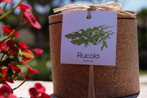 Grow Kork Rucola Kräuter im Korktopf  - Life in a bag