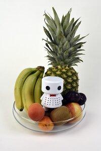 Food Protector Roboter - Phresh