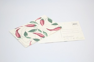 Postkarte mit Kamillensamen - Life in a bag