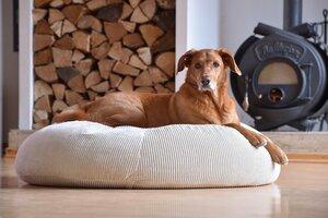 orthopädisches Hundebett aus Cord STOCKHOLM in L - Grüne Pfote®