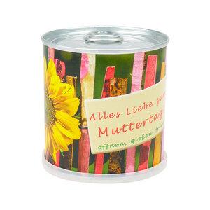 Muttertags Blumengrüße - Dosenblume mit Sonnenblume - MacFlowers