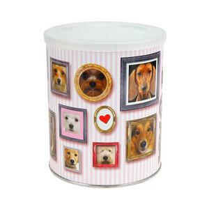Geschenkdose Hundegalerie zum Selbstbefüllen, mit Klarsichtbox - Extragoods