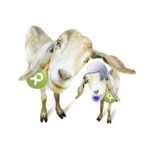 Eineinhalb Ziegen - OxfamUnverpackt