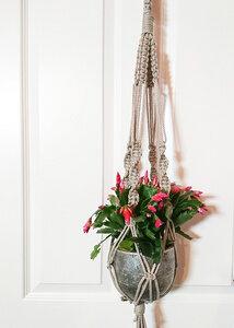 Makramee, Blumenampel aus Hanf - ELZBAG