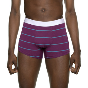 Trunk Short 'Tight Tim' Purple/Blue Stripes - VATTER