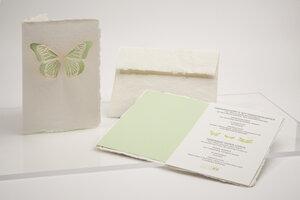 Briefkarte Schmetterling - Formes