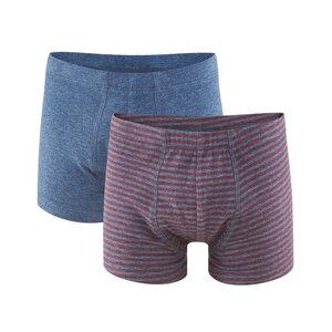 Jungen Pants BASIL 2er Pack - Living Crafts